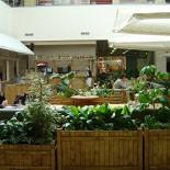 Ресторан Патрик & Мари - фотография 1