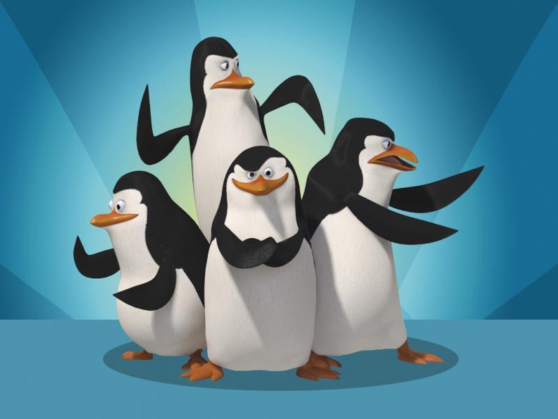 Pinguine ein leben lang treu? (Tiere, Biologie)