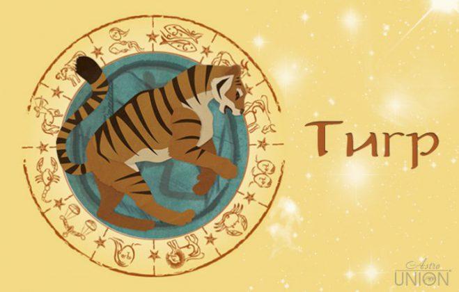 Женщи  в год тигра по гороскопу рак