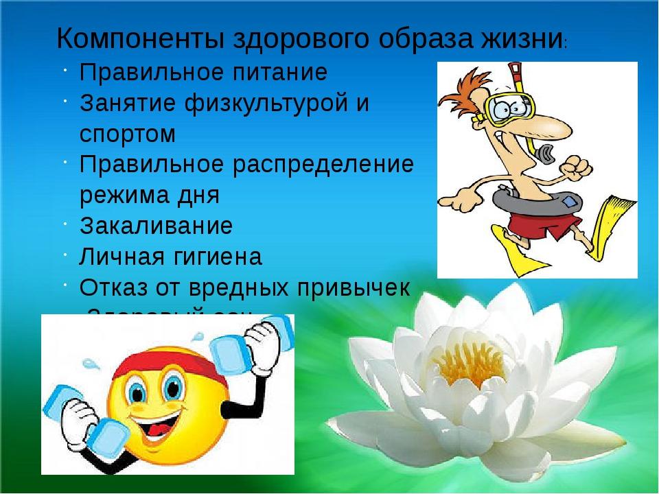 Реферат на тему здоровый образ жизни основы укрепления и