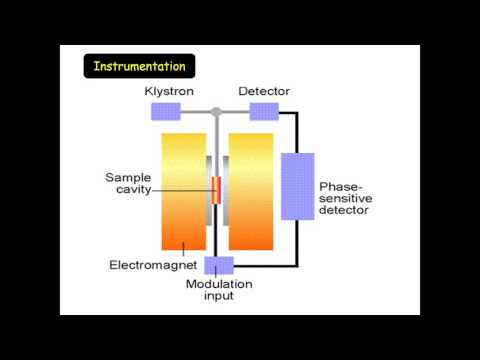 Luminescence and electron spin resonance hookup