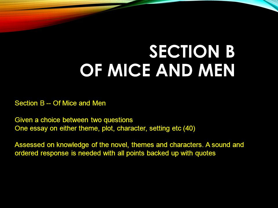 Mice of Men Essay - Free Essays - PhDessaycom
