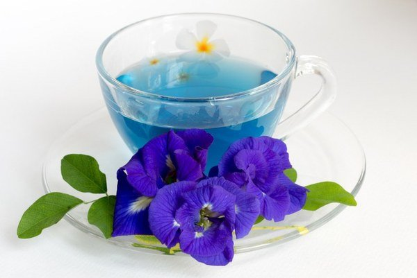 Купить чай чанг шу в украине яндекс