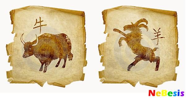 Гороскоп   женщину бык овен