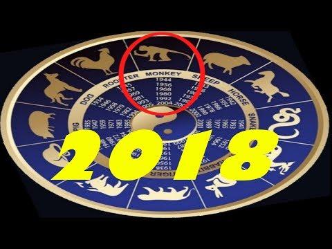 Гороскоп   2018 год для обезьяны скорпион женщи