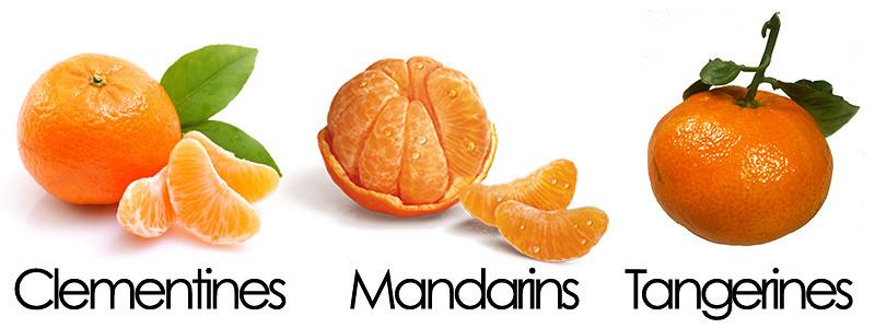 Tangerine controversy login canada
