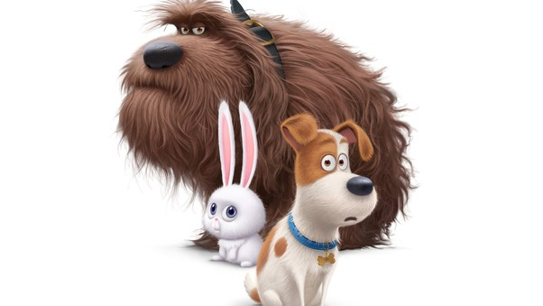 The Secret Life of Pets – Watch The Secret Life of Pets