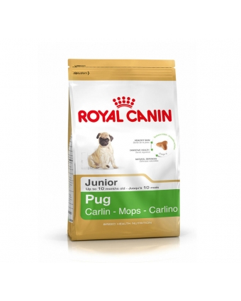 Корм royal canin pug junior