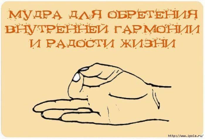 Мудры - Форум