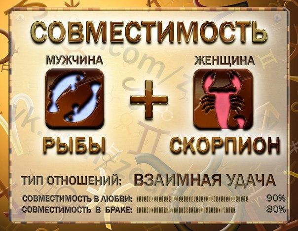Гороскоп совместимости весы женщи  и скорпион мужчи