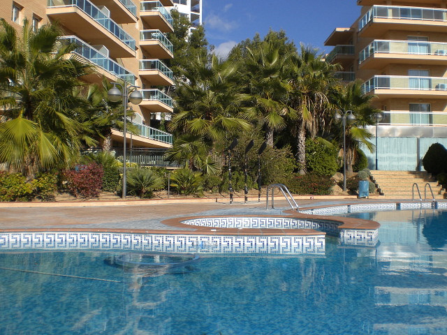 Клоповник - отзыв о Inter Apartments, Салоу, Испания