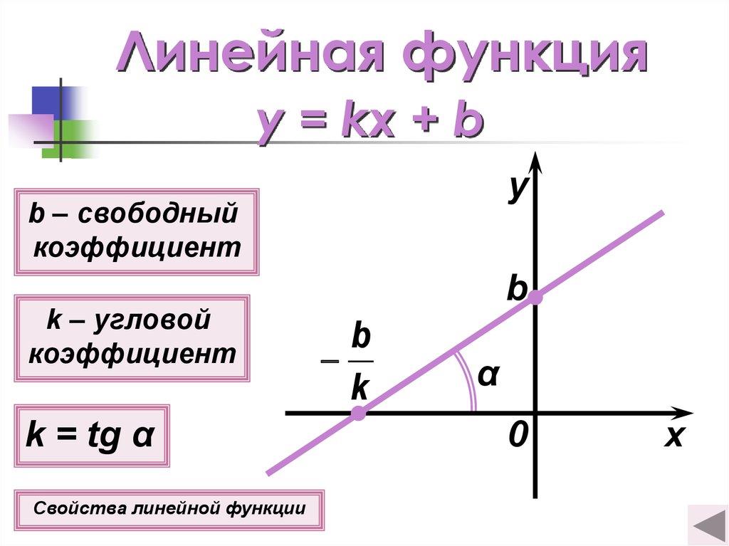 Функции: понятие, определение, графики –