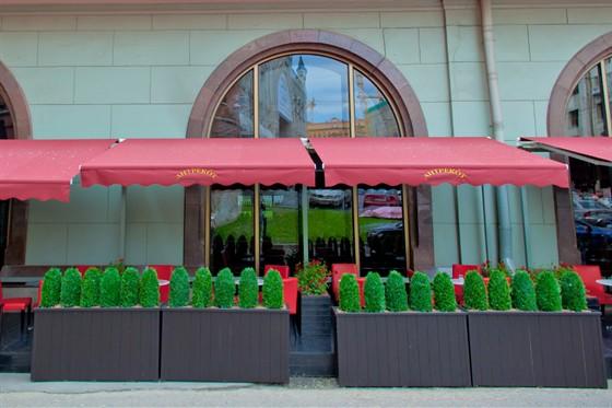 Ресторан Антрекот - фотография 26 - летняя веранда