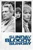 Воскресенье, проклятое воскресенье (Sunday Bloody Sunday)