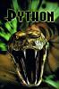 Питон (Python)