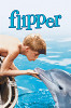 Флиппер (Flipper)