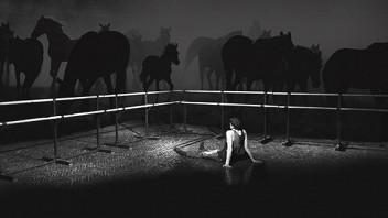 История лошади
