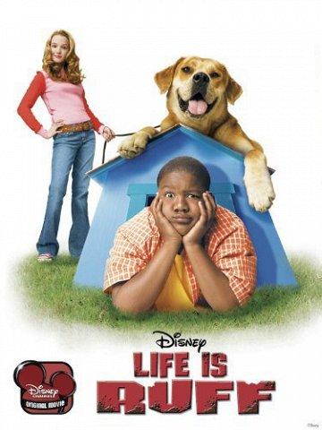 Постер Лучший пес