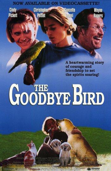 Постер Прощальная птица