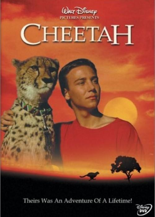 Гепард (Cheetah)