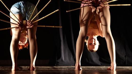 Сны бамбука