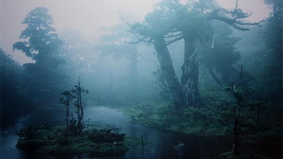 Кадзуёси Миёси (Япония)