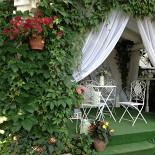 Ресторан Дачная жизнь - фотография 4 - Очень красивый сад для фото сессии