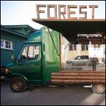 Ресторан Forest Camp - фотография 1