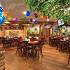 Ресторан Елки-иголки - фотография 3