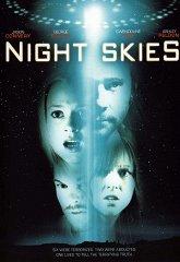 Постер Ночные небеса
