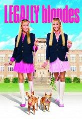 Постер Блондинки в законе