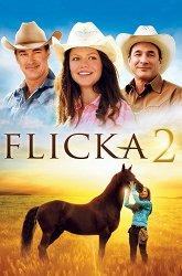 Постер Флика-2