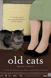 Постер Старые коты