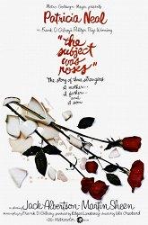 Постер Все из-за роз