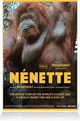Постер Ненетт