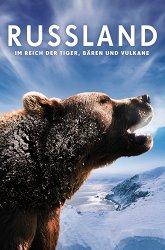 Постер Россия — царство тигров, медведей и вулканов