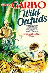 Постер Дикие орхидеи