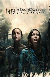 Постер В лесу
