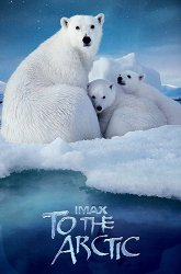 Постер Арктика 3D