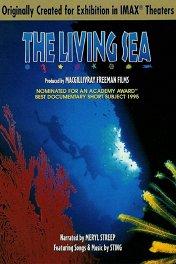 Живой океан 3D / The Living Sea