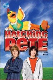 Пит в перьях / Hatching Pete