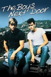 Соседские мальчишки / The Boys Next Door