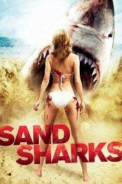 Песчаные акулы / Sand Sharks