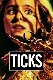 Клещи / Ticks
