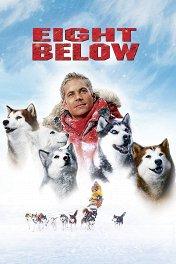 Белый плен / Eight Below