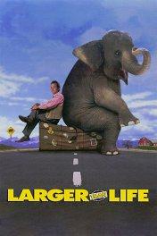 Больше чем жизнь / Larger then Life