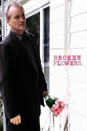 Сломанные цветы / Broken Flowers