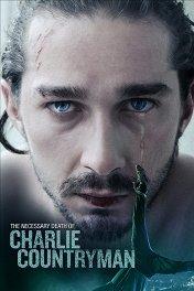 Опасная иллюзия / The Necessary Death of Charlie Countryman