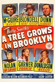 Дерево растет в Бруклине / A Tree Grows in Brooklyn