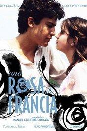 Французская роза / Una rosa de Francia